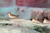 Sandpipers by Shirley Vauvelle, Painting, Acrylic on canvas